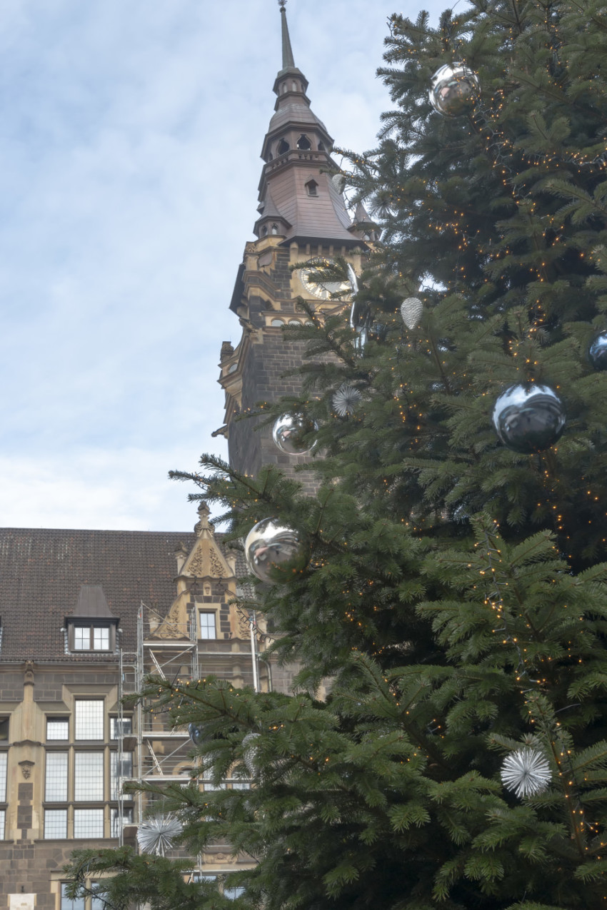 Christmas tree in Wuppertal Elberfeld in front of the town hall