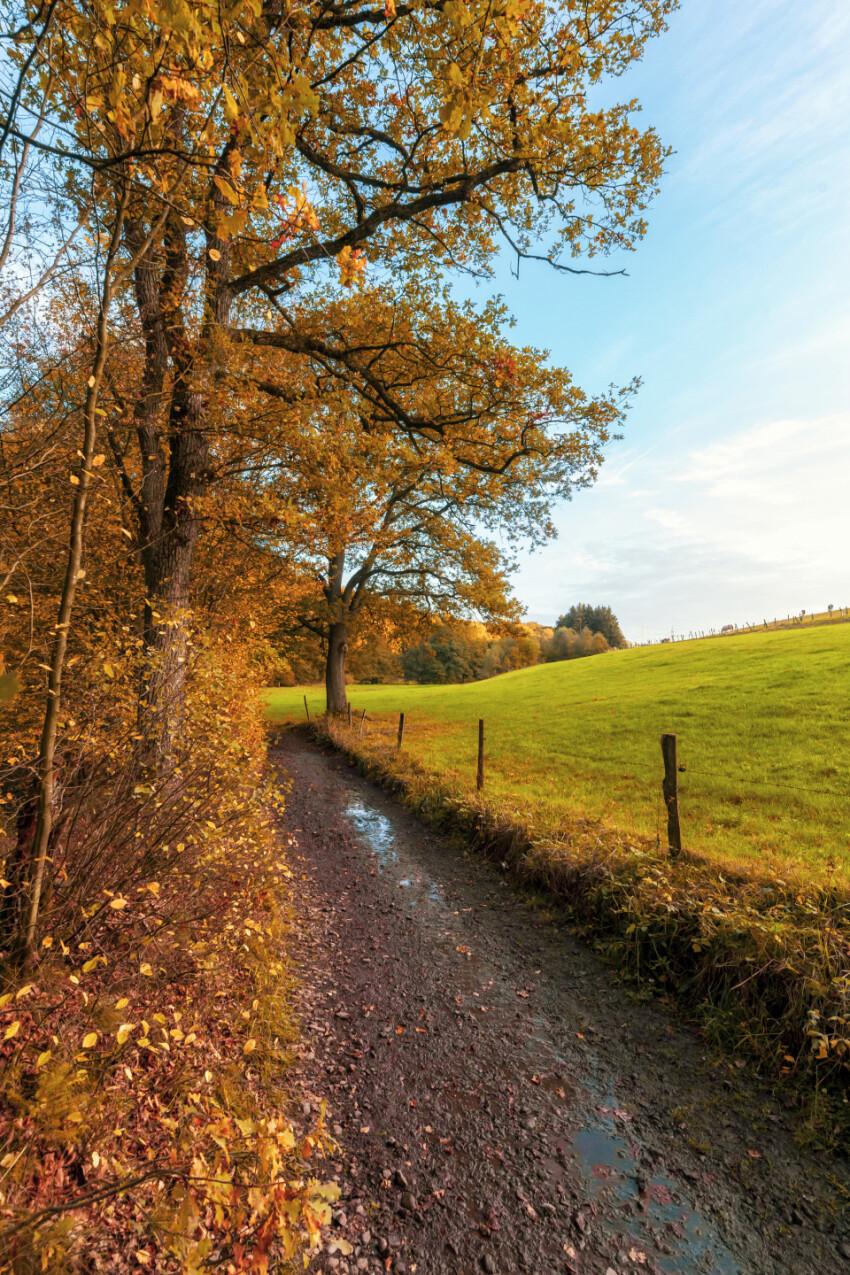 Dirt road in germany by marscheider bachtal in nrw