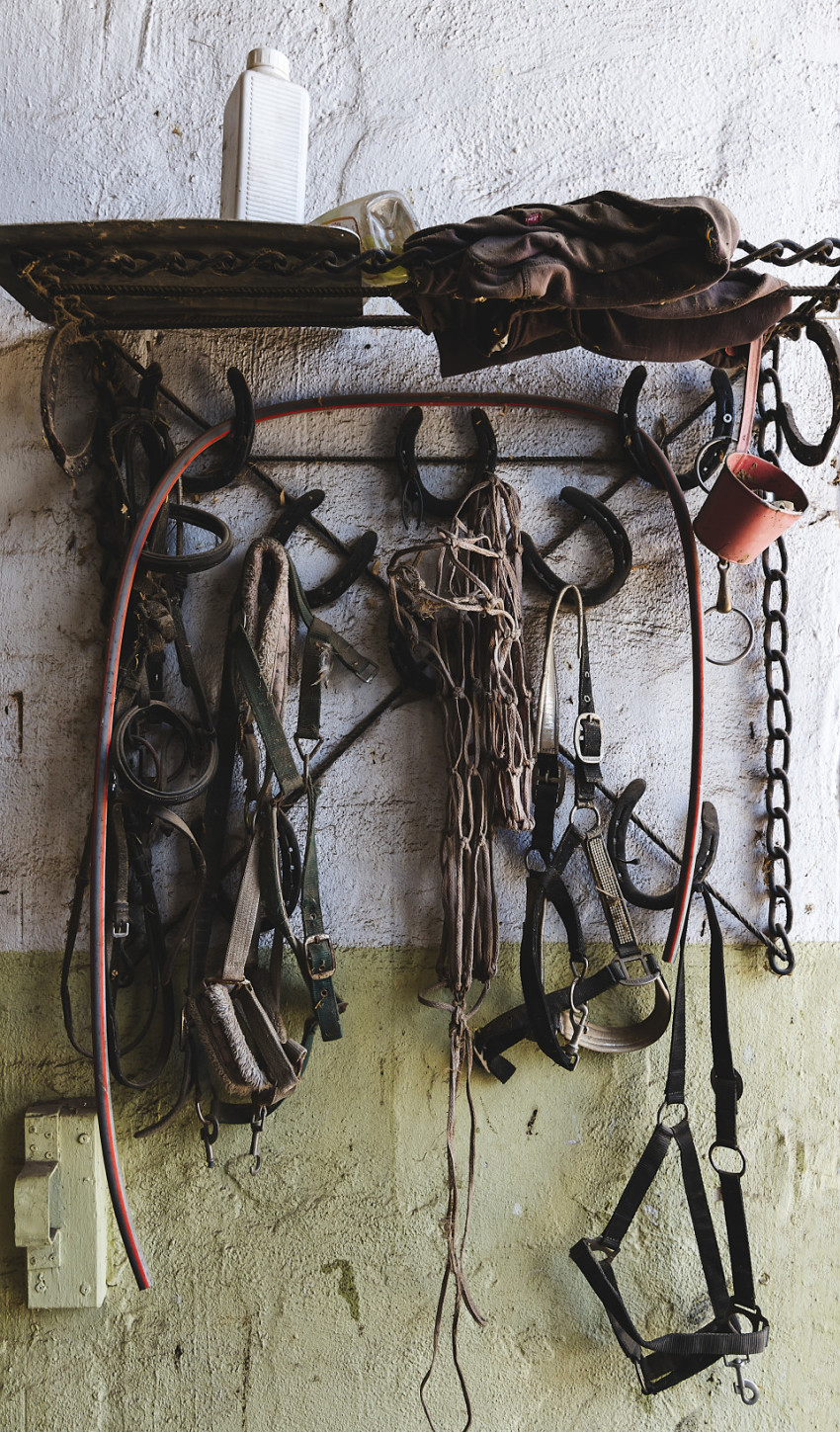 riding equipment on a wall