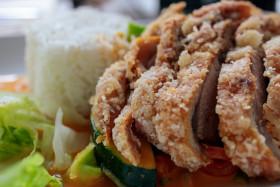 Stock Image: Asian Crispy Duck Lunch