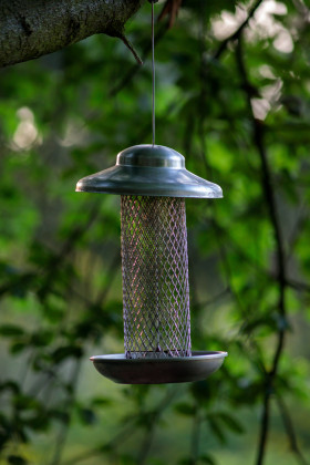 Stock Image: Bird Feeder