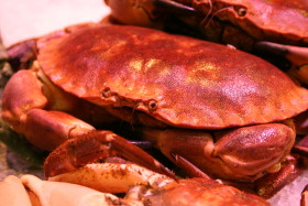 Stock Image: Crab at the fish market