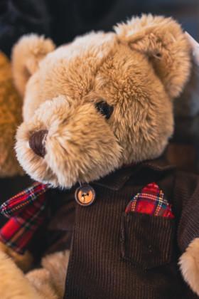 Stock Image: Cuddly teddy bear