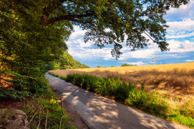 Stock Image: German country road