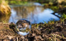 Stock Image: glass ball on pond