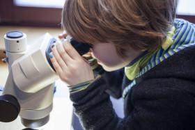 Little boy on a microscope