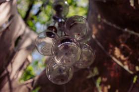 Stock Image: old light bulbs