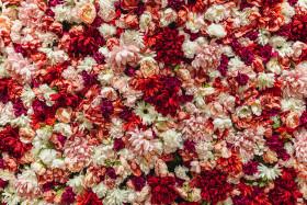 Stock Image: Romantic plastic flowers background